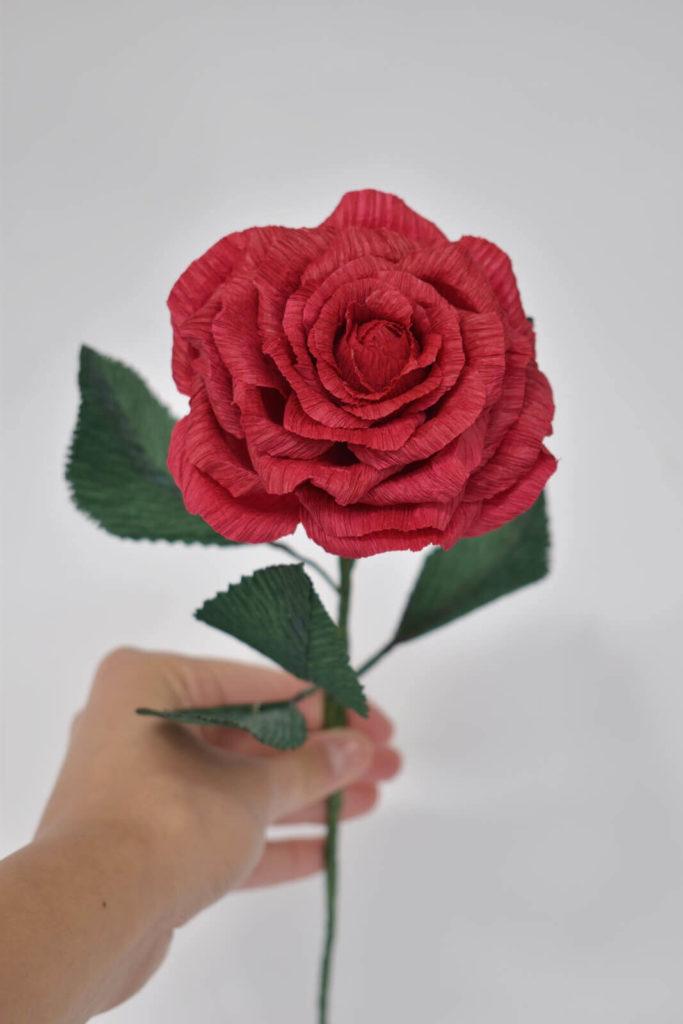 ruža-od-krep-papira-s-porukom (8)